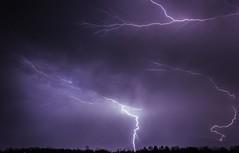 Lightning2 (Austyn Terrio) Tags: lightning purple longexposure electricity shock strike night dark light zigzag florida louisiana astphotography storm daytonabeach