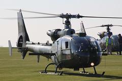 Westland WA341 Gazelle AH.1 AAC XZ320 (NTG's pictures) Tags: middlewallop hampshireengland gazelle50th anniversary fly in aac alat raf faa westland wa341 gazelle ah1 xz320