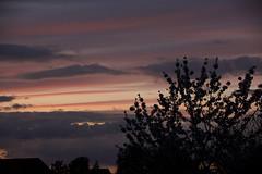 dawn (Alex Jacek) Tags: dawn sunset sun sky niebo kolorowe zachod slonca sonnenuntergang sonnenschein himmel farbenfroh bunt sundown down sunrays sunbeams sunny spring night evening silhouette wieczor abend sonne