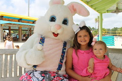 Easter Bunny 094