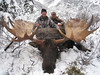 Alaska Dall Sheep Hunt & Moose Hunt 15