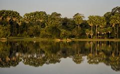 Reflections At Angkor Thom (doug-craig) Tags: cambodia cambodia20170127dng asia angkorthom travel landscape stock nikon d7000 journalism photojournalism dougcraigphotography