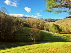 ~  Goin' Up Home To Live In Green Pastures  ... (~ Cindy~) Tags: park state mountain roan spring 2017 march grass green mountains fences day beautiful hff