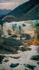 黃龍 (何神) Tags: 中國 四川 黃龍 風景 名勝 自然 旅行 攝影 雪 寺廟 宗教 colors green yellow 山谷 山 樹 枯枝 冬