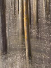 forest light (sami kuosmanen) Tags: kuusankoski kouvola intentionalcameramovement icm suomi finland light long exposure europe photography pitkä valotus valo metsä maisema luonto landscape puu tree trees colorful