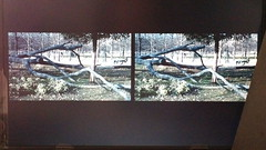 Floating window (Dominik Lange) Tags: steroscopic stereography 3d movie floatingwindow paris documentary