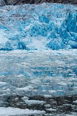 _MG_5015a (markbyzewski) Tags: alaska ugly iceberg tracyarm southsawyerglacier