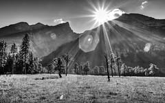 morning light at the eng (lichtauf35) Tags: wideangle monocrome karwendel bw hdr ef1740 1100d lightroom photomatix slik blackwhite landscape intothelight tripod sunshine flares 50favs noiretblanc 1000views lichtauf35