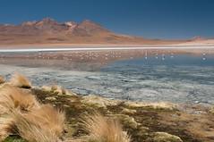 Canapa Lake, Bolivia