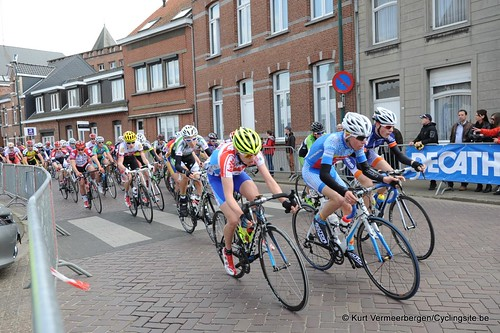 Herman Vanspringels Diamond 2014 (73)