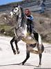 Horses in Inkerman (horses007) Tags: portrait horses people horse girl beautiful beauty penis photography excited erection sevastopol sebastopol equestrian stallion портрет inkerman поход лошадь девушка конь инкерман жеребец