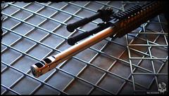 Stailness (Munition) Tags: stainless bipod munition seekins muzzlebrake seekinsprecision