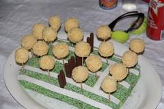 PTC Crazy tennis cake 2013 IMG_5786