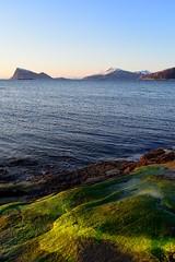 Evening light from Hillesy (John A.Hemmingsen) Tags: seascape green coast troms hja sommary hillesy nikond600 nikon2880g