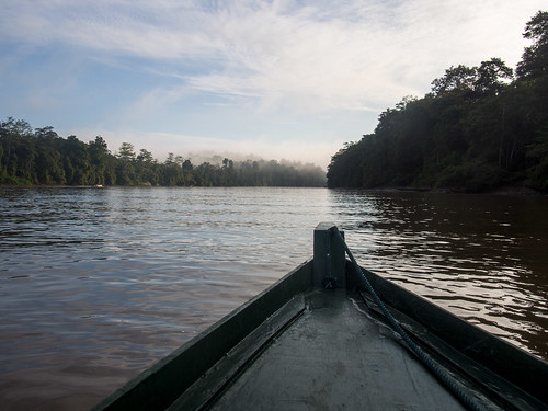 water boat malaysia borneo forests sabah riversandstreams kinabatanganriver toysandgames kinabatanganwildlifesanctuary natureandenvironment