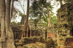 Ta Prohm (expatwannabe) Tags: travel cambodia siemreap taprohm hdr hdri kampuchea highdynamicrangeimaging ef1635mmf28liiusm canoneos5dmarkii