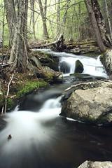 2014_0513Upper-Hiram-Brook0075 (maineman152 (Lou)) Tags: nature water spring woods rocks stream maine may waterfalls flowing hirambrook