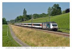 Re 460 105-0 - Crans-prés-Cèligny (CC72080) Tags: train sbb locomotive cff re460 cranspréscèligny