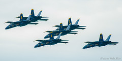 On the way to a Delta Barrel Roll (I think) (Laurie-B) Tags: blue usa angel america airplane us spring md aircraft aviation air unitedstatesofamerica flight navy jet maryland airshow american northamerica hornet f18 usna blueangels acrobatic freestate afternoonlight 2014 northamerican westernshore annearundelcounty dpca cityofannapolis oldlinestate 2014blueangelsusna