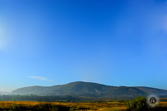 araku valley (Perpetually Shaw) Tags: blue wild sky india nature composition forest wonderful landscape woods nikon exposure earth vibrant valley serene grassland hdr vizag araku naturelovers landscapephotography hdrphotography nikonclub nikond5200