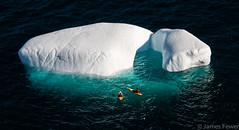 Two Kayakers and a Bergy Bit (Litehouseman) Tags: berg newfoundland kayak iceberg bit kayaker bergy bergs cuckholdscove