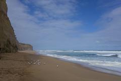Gibson steps, Great Ocean Road, VIC, Australia (giaunit) Tags: ocean blue sea sky beach nature beauty birds outside outdoors sand waves australia vic greatoceanroad gibsonsteps seegor
