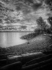 2014-05-05 - 001-002 - HDR - IR - BW (vmax137) Tags: seattle park white black beach ir bay washington panasonic infrared wa myrtle edwards hdr elliott interbay 2014 dmcgh2