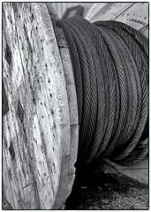Cable (jores59) Tags: mediumformat 6x9 weymouth 620film kodakfilm medalistii kodakmedalist weymouthma