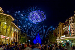 Fireworks Friday (Disney_Nuts) Tags: wishes magickingdom 2014 magicalexpress spectomagic