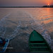 Going to the Sundarbans at sunset