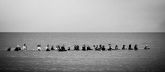 Longe côte Dunkerque