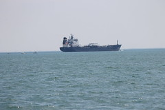 Algosea (Algoma Tankers) - Views from Lake St. Clair - Summer Discovery Cruises (July 12, 2014) (cseeman) Tags: summer lake water birds boats michigan recreation seabirds freighter tankers lakestclair metropark algosea stclairflats recreationalboating algomatankers michiganseagrant summerdiscoverycruises theoldclub lakestclairmetropark algoseatanker summerdiscoverycruises2014
