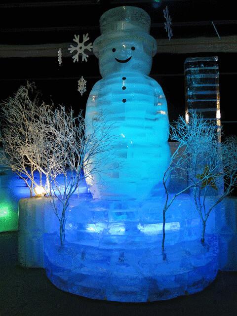 DSC 2014急凍樂園06484