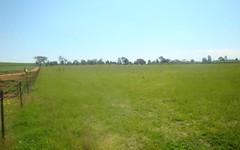 203 Moorbel Drive, Canowindra NSW