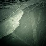 Lines (Nazca, Peru)