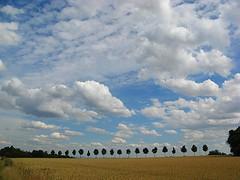 Gott, innigstnah, wie unbekannt bist du (amras_de) Tags: sky cloud avenida wiesbaden nuvola wolke nubes avenue nuage nuvem nor vicolo aleo nube aleja allee laan sauerland bulut wolk sk oblak moln boira nvol pilvi chmura alej dotzheim avinguda all oblaci hodei nubo pilv wollek clood felho debesis scamall sugrt makoni puiestee sylterstrase nvol nvula