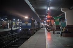 11421 Jaipur