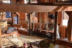30098734 (wolfgangkaehler) Tags: asia asian southeastasia myanmar burma burmese inlelake villagelife lake innpawkhonevillage woman workshop people worker working weaver weaving weavingloom weavinglooms weavingcloth loom looms