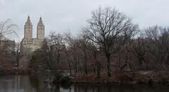 Winter, Central Park (AAcerbo) Tags: winter centralpark theeldorado architecture nature urbannature trees manhattan newyorkcity nyc park