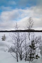 In Winter's Grip (Roantrum) Tags: finland frozenlake roantrum mf17