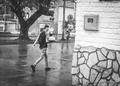 Bailando en la Lluvia (Lex Arias / LeoAr Photography) Tags: 2017 bn bw barquisimeto blackandwhite blancoynegro calle callejera city ciudad everybodystreet fotografíacallejera iglexariasphotos leoarphotography lexarias monochromatic monochrome monocromo nikon nikond3100 street streetphotography venezuela