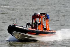 Kegelrobbe (Bernhard Fuchs) Tags: boat cuxhaven elbe küstenwache nikon patrol patrolship schiffe ship ships vessel water zoll boot meer