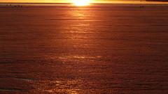 Golden hour above the frozen sea (Lauttasaari, Helsinki, 20170305) (RainoL) Tags: 2017 201703 20170305 balticsea drumsö fin finland fz200 geo:lat=6015311092 geo:lon=2487157668 geotagged goldenhour helsingfors helsinki hevosenkenkälahti hästskoviken ice lauttasaari march nyland sea seashore sunset uusimaa water winter