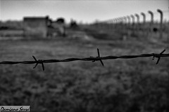 Too much hate and cruelty took place here (serra.damiano) Tags: auschwitz birkenau camp deportation jews holocaust poland history sadness cruelty barbed wire storage furnace reportage documentation travel