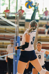 150718_WEVZA_SUI-ESP_072 (HESCphoto) Tags: volleyball schweiz spanien wevza saison1415 damen jugend länderspiel u18 mulhouse centresportifrégionalalsace