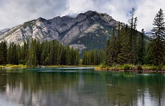 Mount Norquay and a Setting Along the Banks of the Bow River (Banff National Park) (thor_mark ) Tags: nikond800e lookingnw day2 triptoalbertaandbritishcolumbia banffnationalpark capturenx2edited colorefexpro mountnorquay rockymountains canadianrockies centralfrontranges sawbackslateranges sawbackrange bowriver river blueskieswithclouds outside nature landscape mountains mountainsindistance mountainsoffindistance trees hillsideoftrees evergreens riverbank alongbanksofbowriver portfolio project365 banff alberta canada absolutelystunningscapes