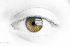 Eye, eye..... (Sue_Shaw) Tags: coloursplash eye eyeball iris highkey spotcolour blackandwhite monochrome canon canoneos eyelash lashes hazel look sight macro 60d canon60d