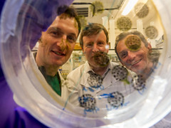 Back to the lab (europeanspaceagency) Tags: red pangaea astronauts planetary geology training esa caves edinburgh bacteria humanspaceflight imageoftheweek