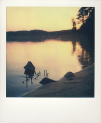 Jordan Lake 01 | 'RoidWeek Spring 2017 | Tuesday 2/2 (Juliana Longiotti) Tags: sunset makerealphotos polaroid sx70 northcarolina jordanlake afterglow water lake tranquility dusk outdoors colorimage imposibleproject