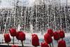 Istanbul/Eminönü (ilk adımlar / les premiers pas) Tags: laleler istanbul kırmızı eminönü su eau flower çiçek fleur rouge